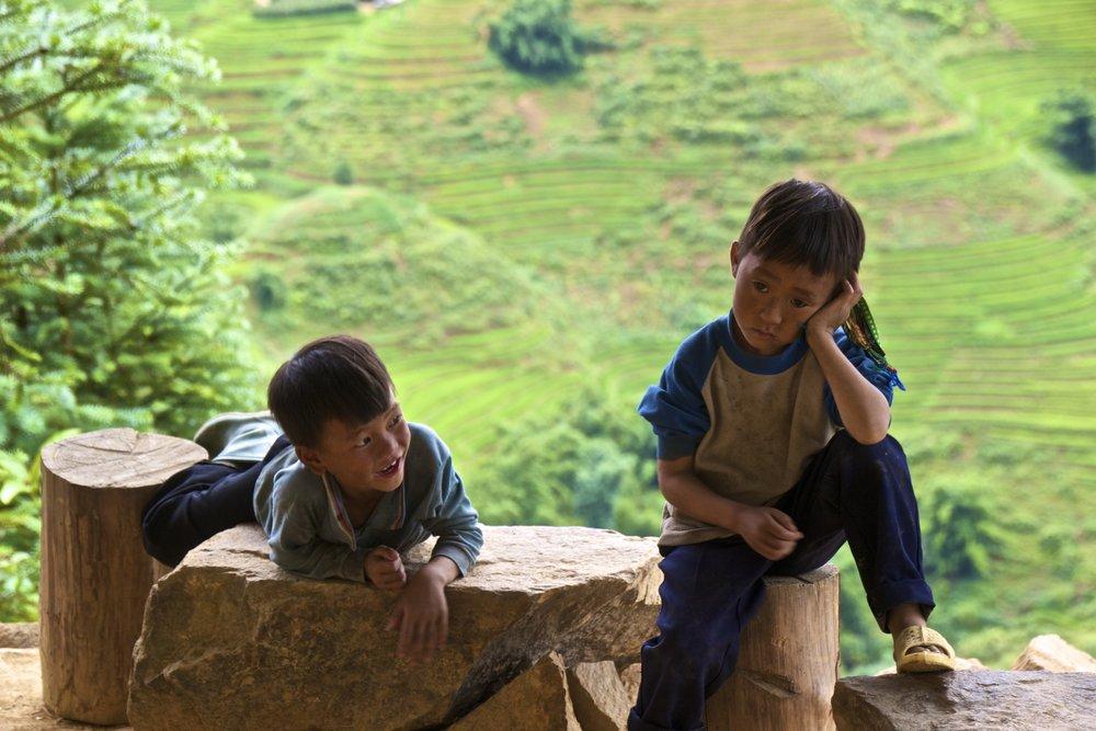 sa pa lao cai vietnam rice paddies 37.jpg