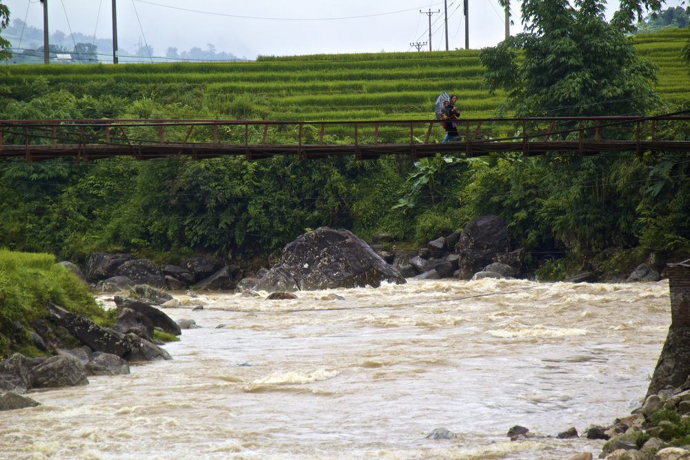 sa pa hmong people rice paddies 6.jpg