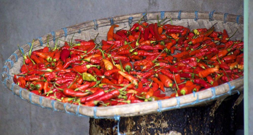 sa pa lao cai vietnam rice paddies 45.jpg