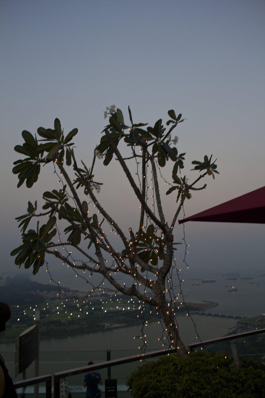 marina bay sands view singapore sunset 7.jpg