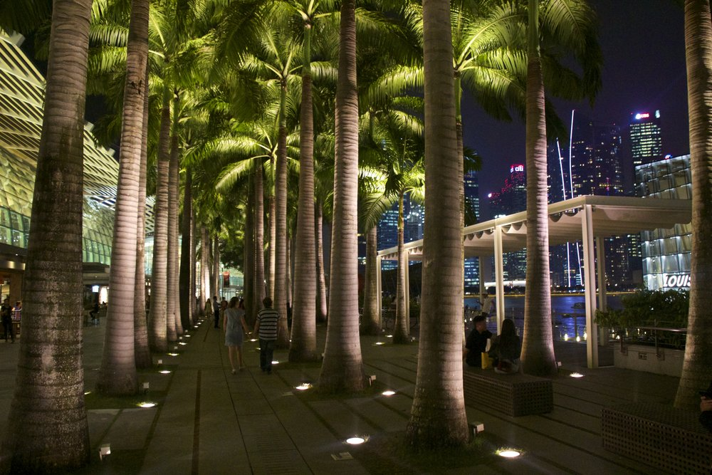 marina bay sands mall singapore night 3.jpg