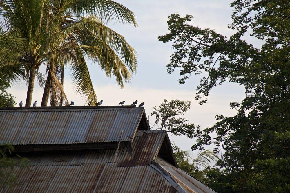 bagan burma myanmar village 4.jpg