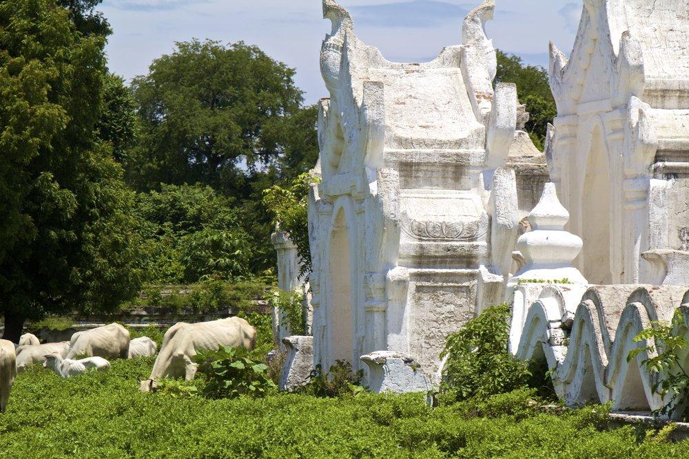 Hsinbyume Pagoda Mingun Burma Myanmar 2.jpg