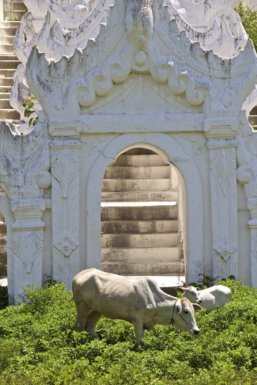 Hsinbyume Pagoda Mingun Burma Myanmar 3.jpg