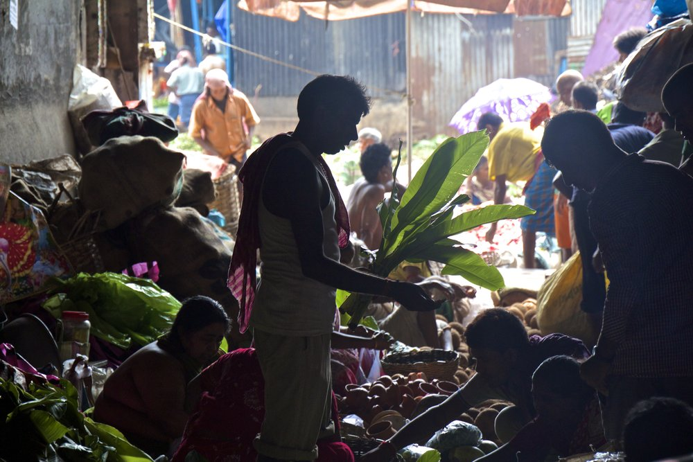 mallick ghat flower market kolkata calcutta india photography 2.jpg