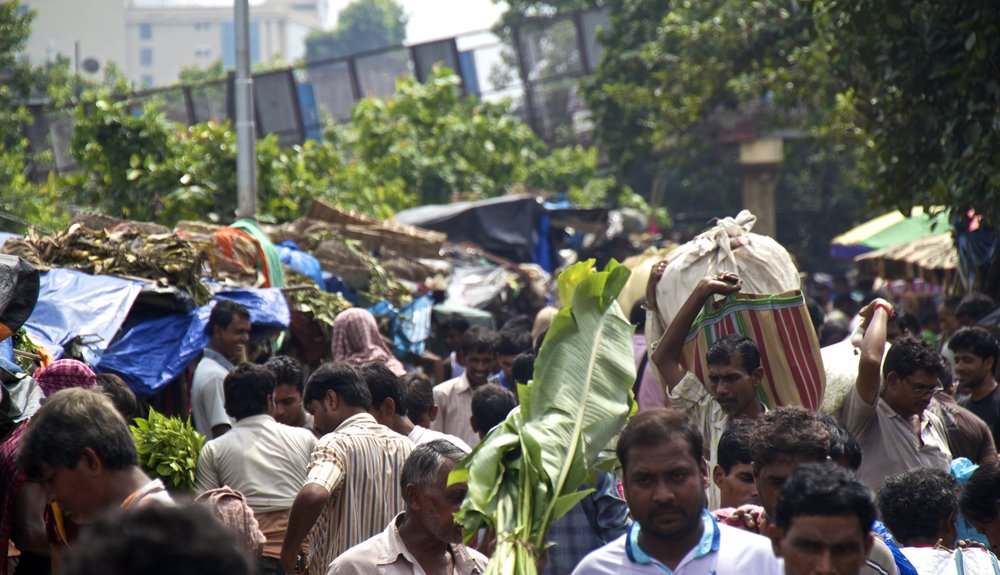 mallick ghat flower market kolkata calcutta india photography 11.jpg
