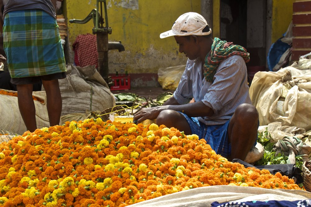 mallick ghat flower market kolkata calcutta india photography 26.jpg