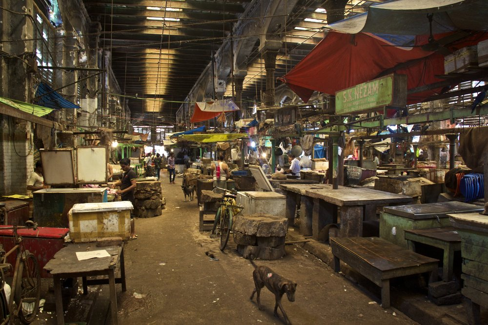 new market calcutta kolkata india photography 3.jpg