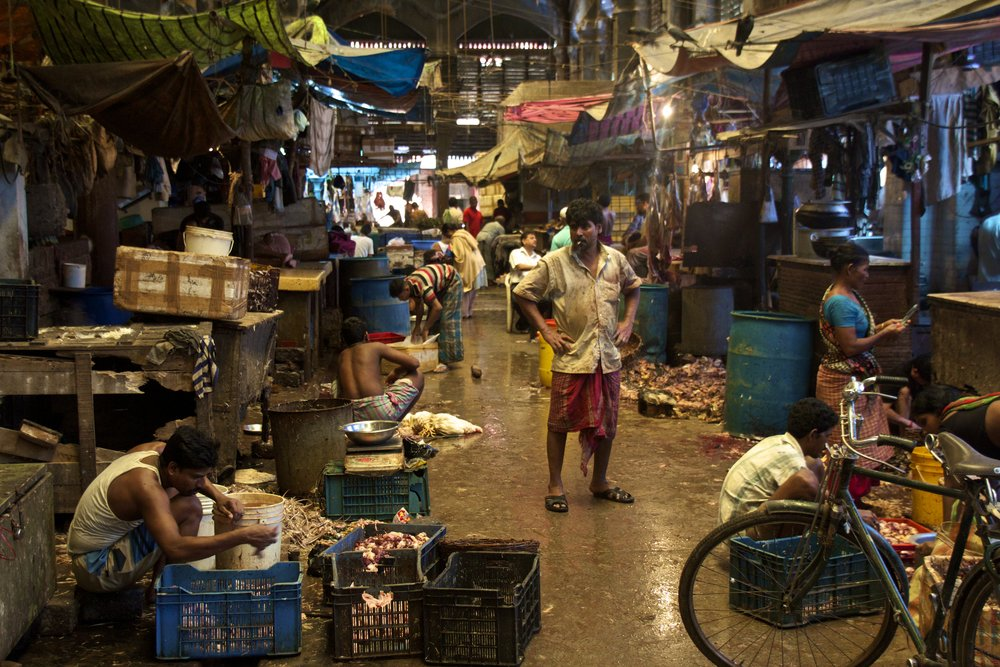 new market calcutta kolkata india photography 4.jpg