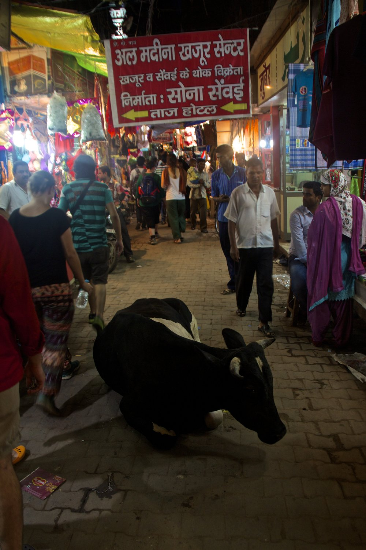 varanasi india street photography 31.jpg
