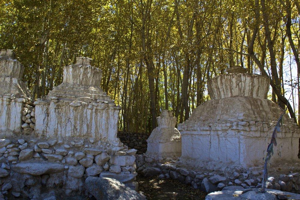leh ladakh india pagodas 1.jpg