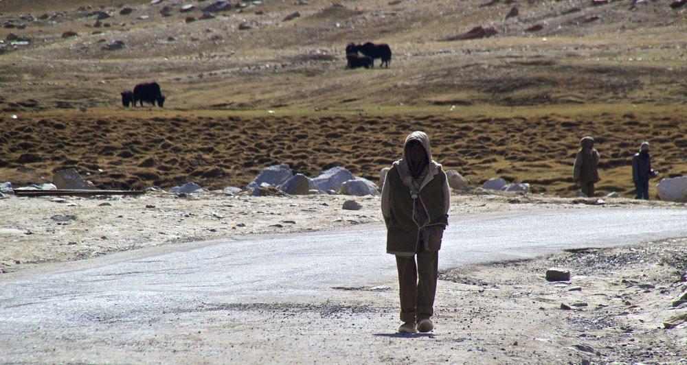 khardungla pass ladakh kashmir india himalayas photography migrant works roads 1.jpg
