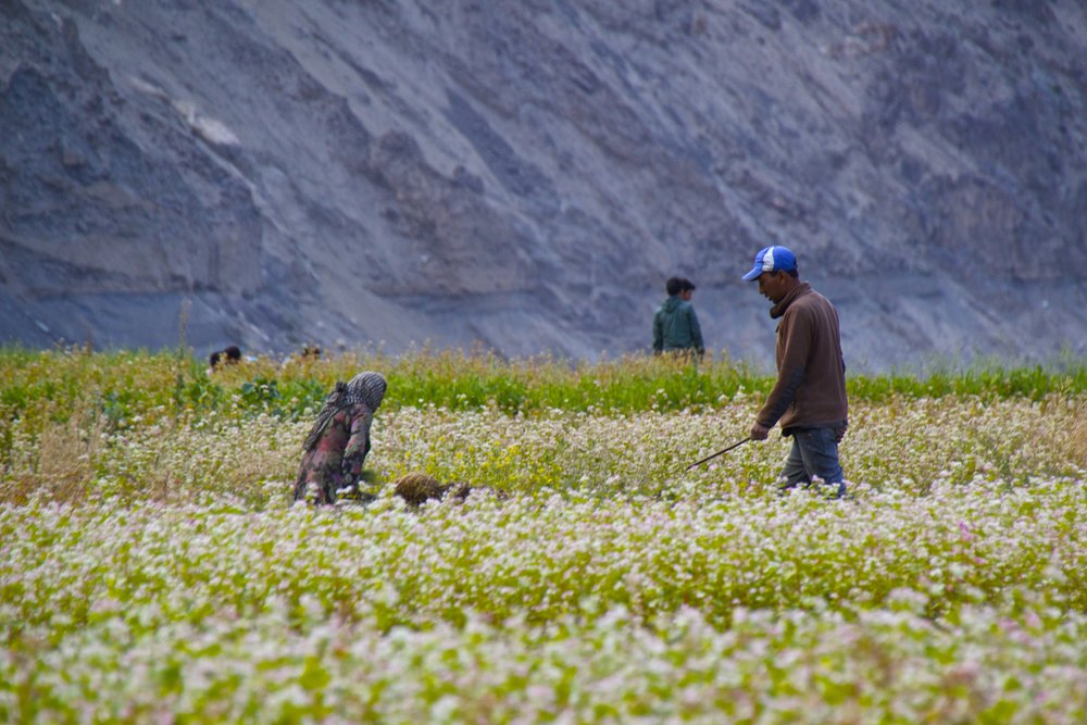 turtuk gilgit baltistan people himalayas 25.jpg