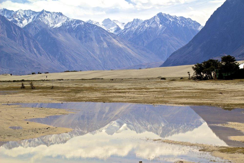 Nubra Valley Ladakh Kashmir Indian Himalayas Desert Dunes 2.jpg