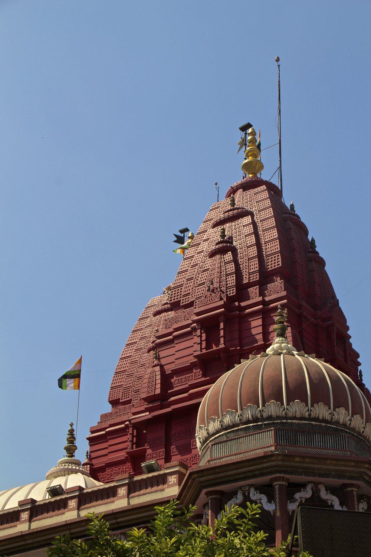 new delhi india 3.jpg