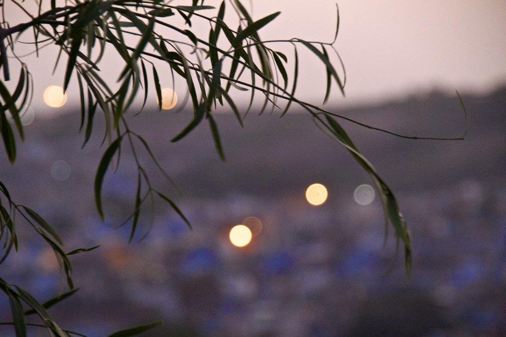 blue city photography jodhpur rajasthan india 31.jpg