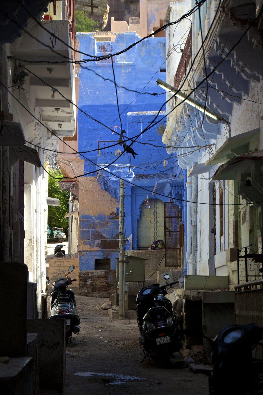 blue city photography jodhpur rajasthan india 48.jpg