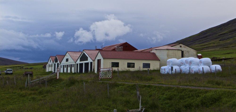 north iceland 3.jpg
