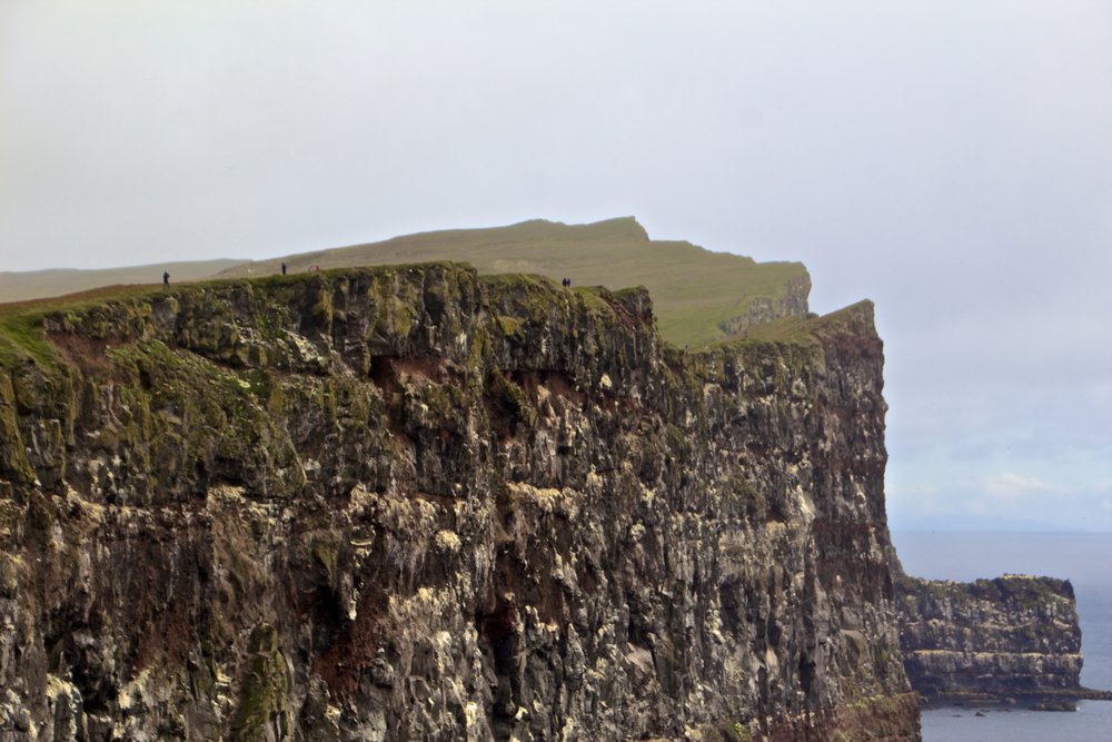 látrabjarg cliffs iceland 2.jpg