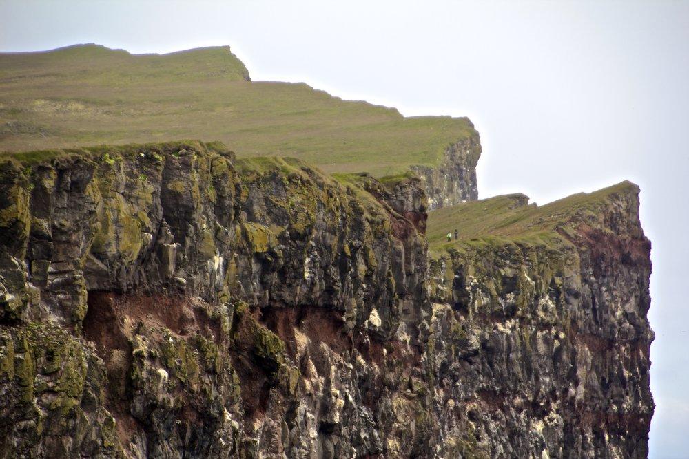 látrabjarg cliffs iceland 3.jpg