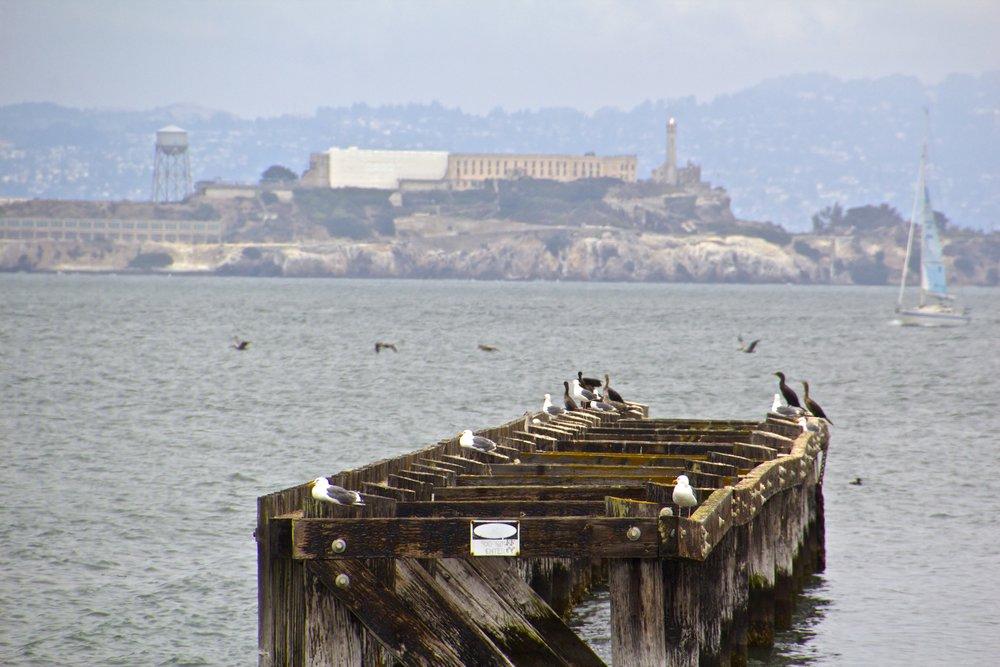 Alcatraz San Francisco 2.jpg