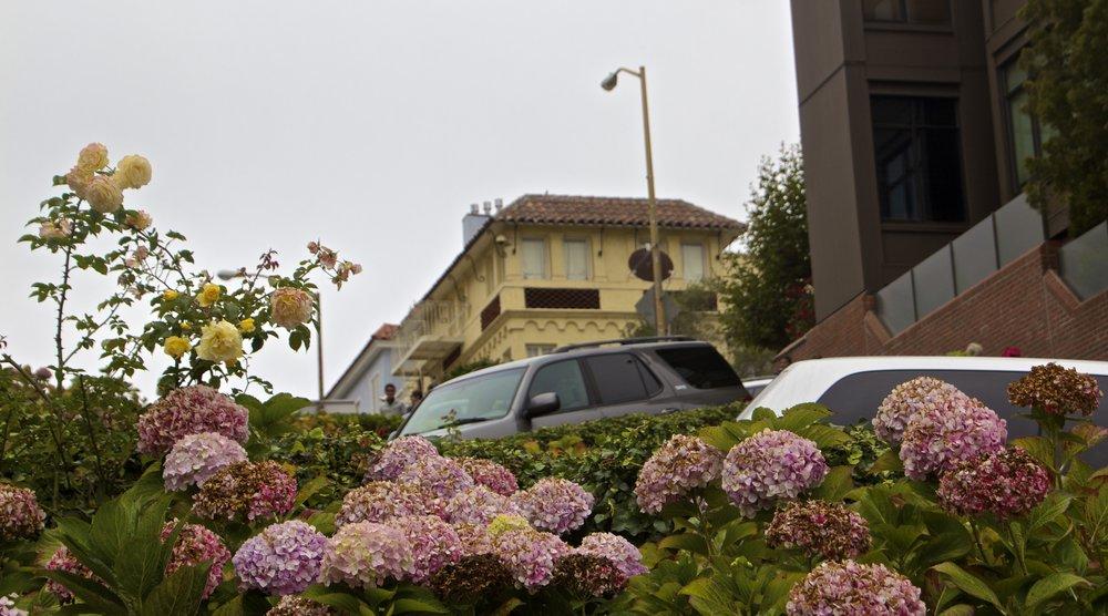 lombard street san francisco 5.jpg