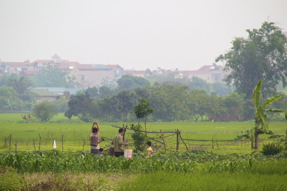 Bac Ninh Vietnam 4.jpg