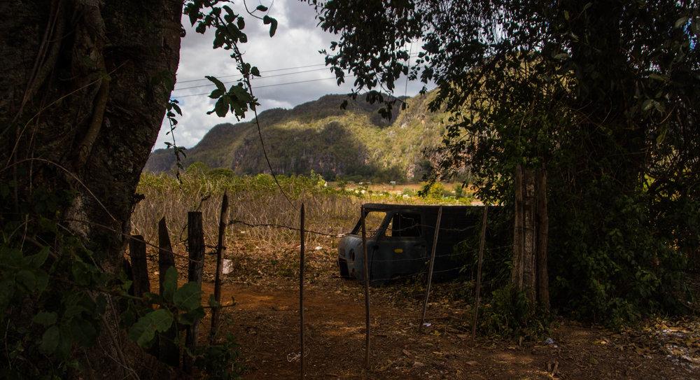fields viñales cuba-1-6.jpg