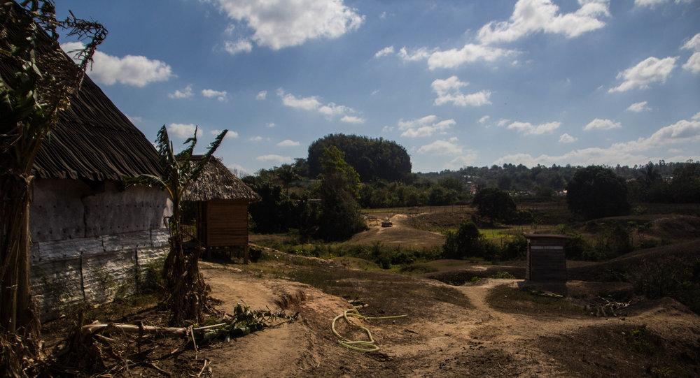 tobacco farming viñales cuba-1-2-2.jpg