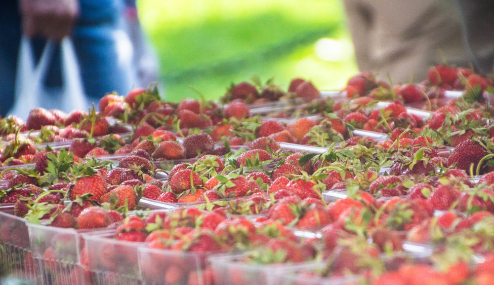 madison-wisconsin-farmers-market-strawberries-1-2.jpg