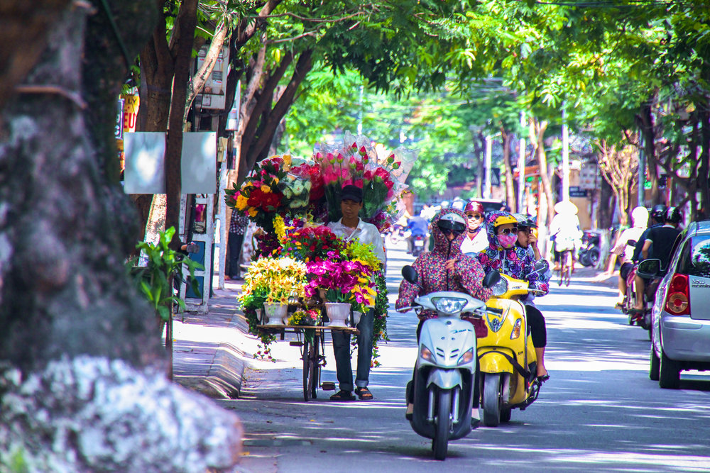 hanoi vietnam flowers-2.jpg