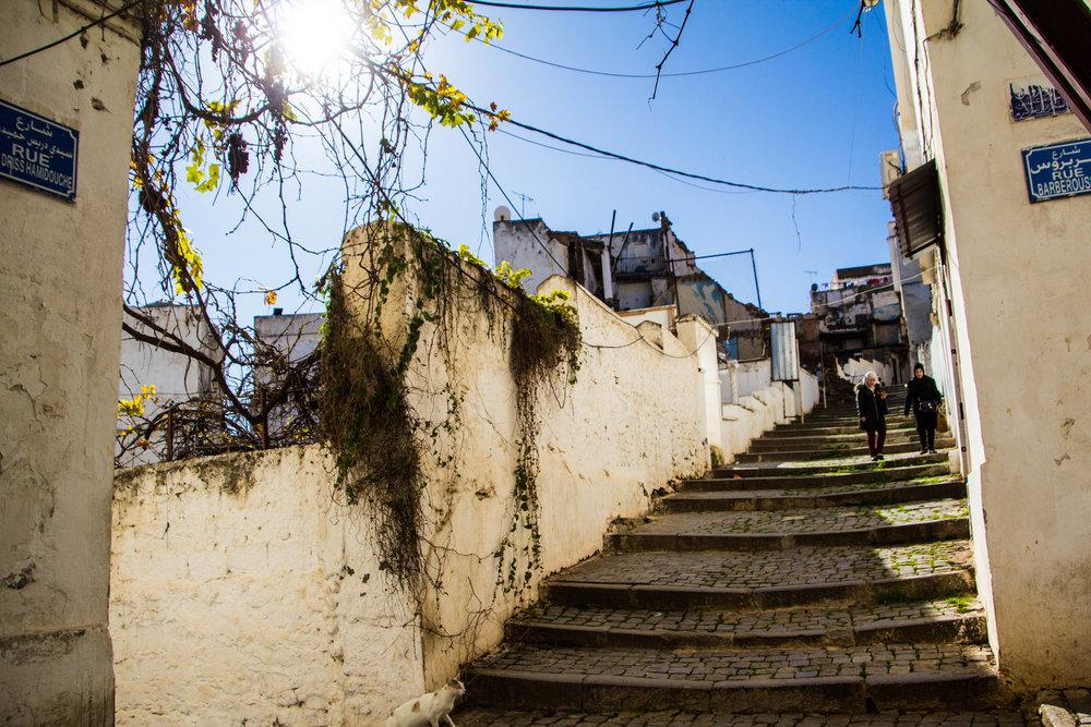 casbah-photography-algiers-algeria-alger-48.jpg