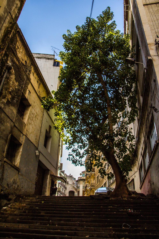 streets-algiers-algeria-5-2.jpg