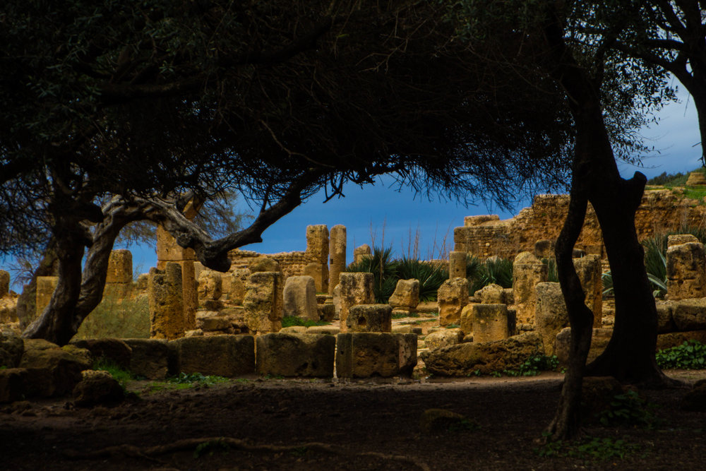 tipiza-roman-ruins-algeria-19.jpg