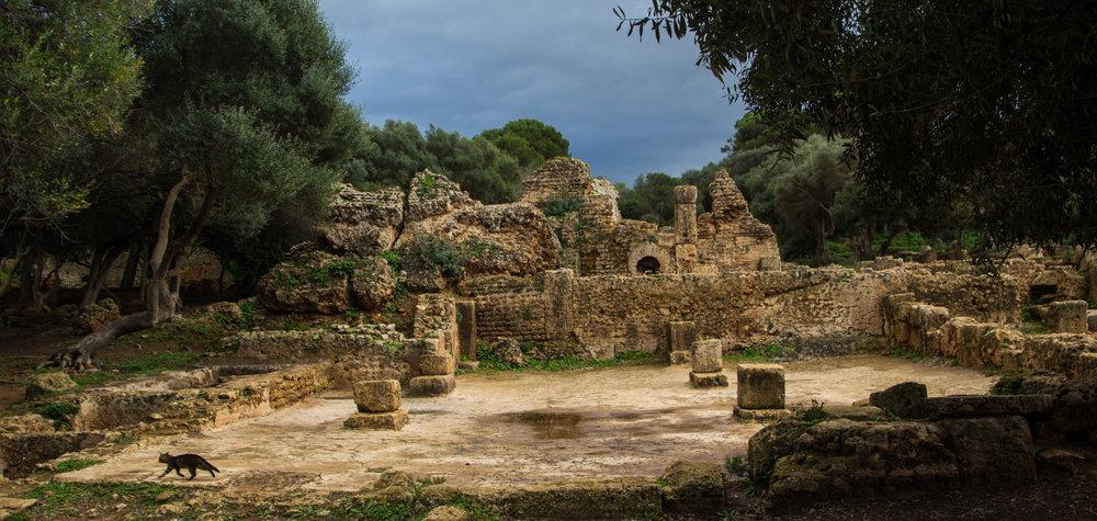tipiza-roman-ruins-algeria-20.jpg