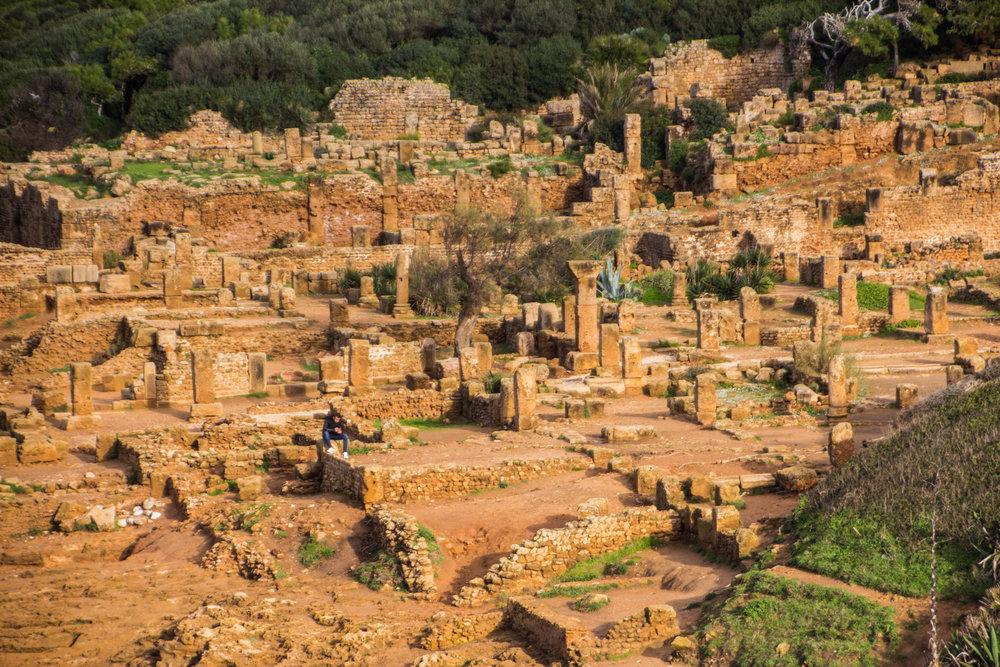 tipiza-roman-ruins-algeria-27.jpg