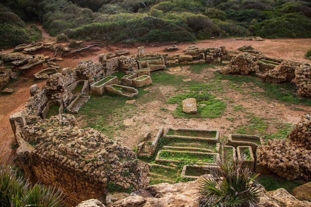 tipiza-roman-ruins-algeria-47.jpg