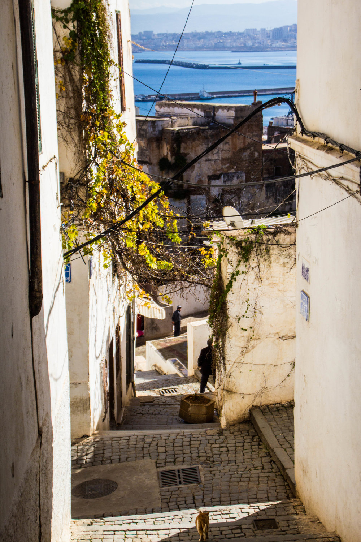 casbah-photography-algiers-algeria-alger-45.jpg