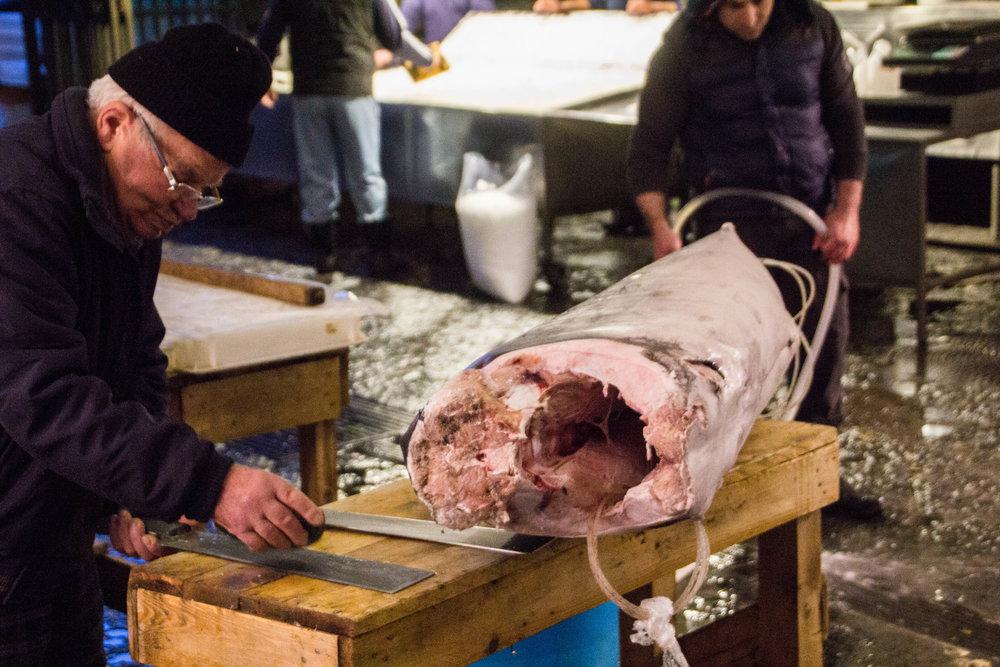 fish-market-catania-sicily-14.jpg