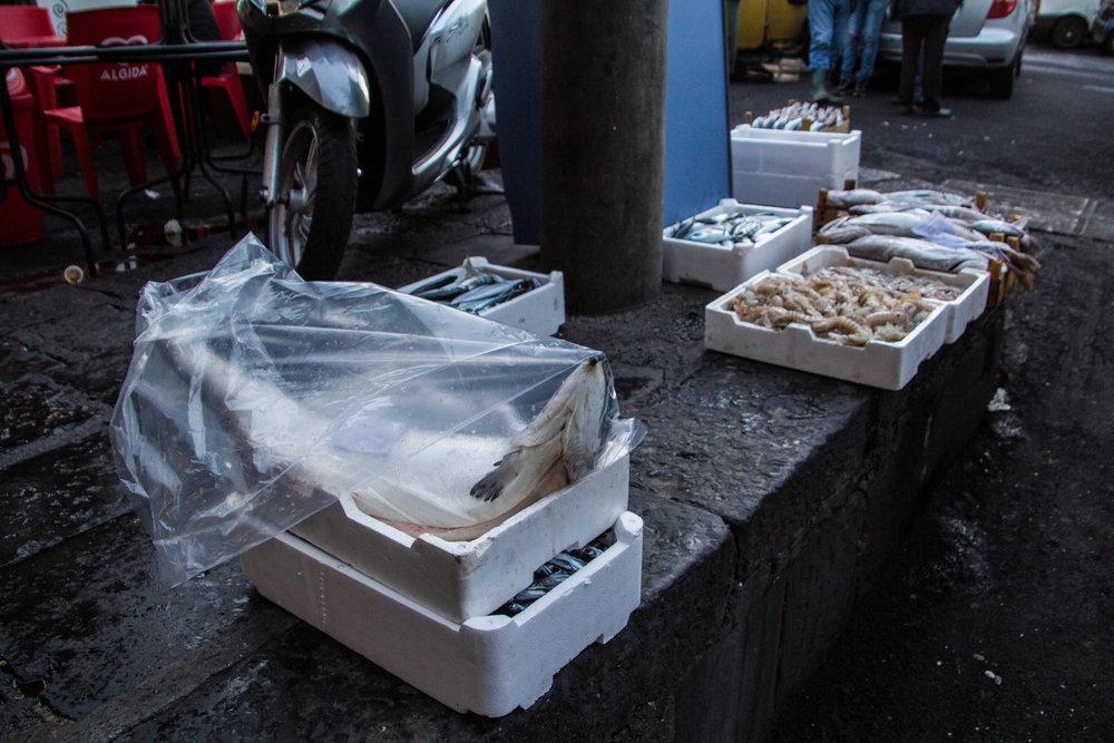 fish-market-catania-sicily-27.jpg