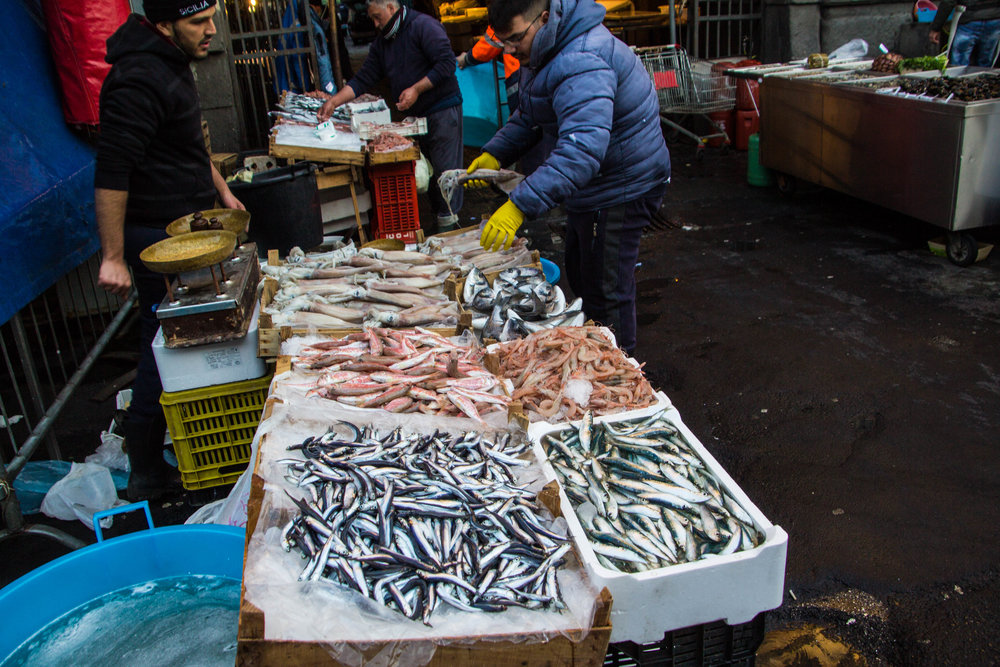 fish-market-catania-sicily-51.jpg
