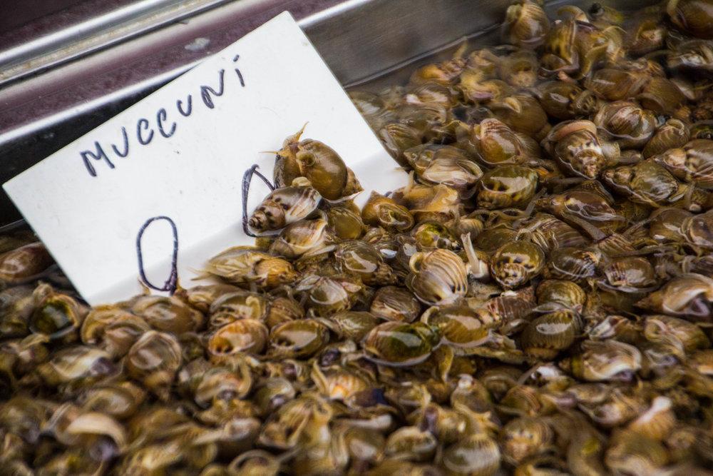 fish-market-catania-sicilia-8.jpg