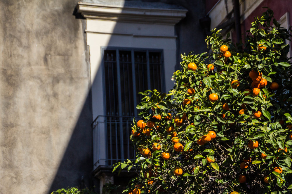 streets-catania-sicily-2.jpg