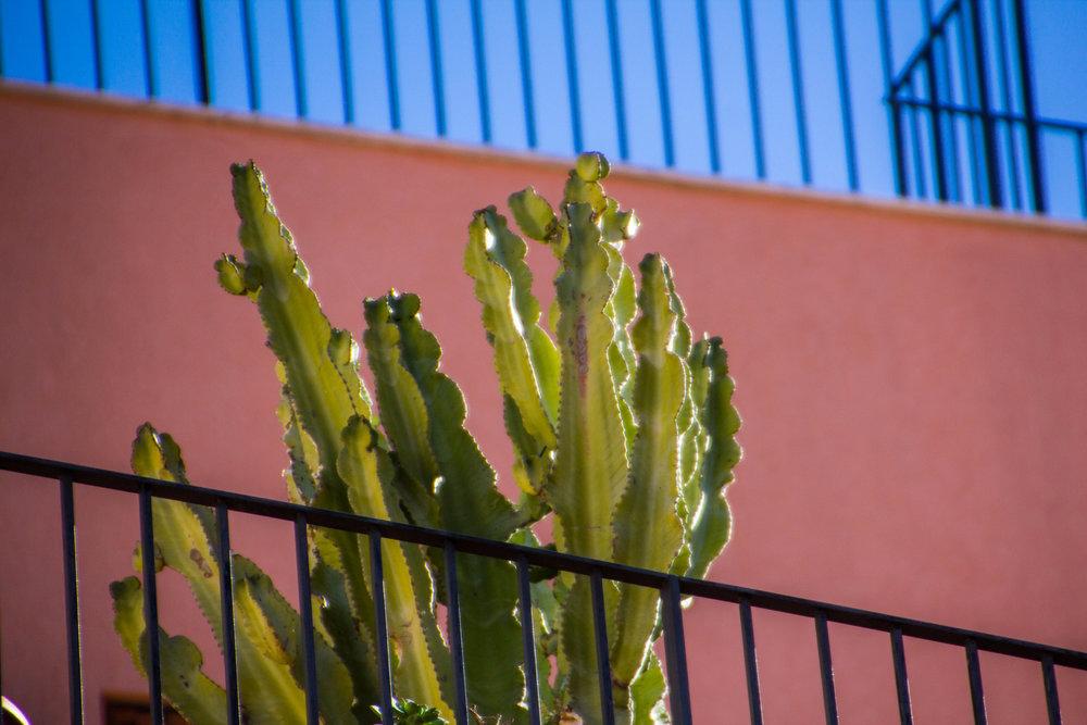 street-photography-taormina-sicily-17.jpg