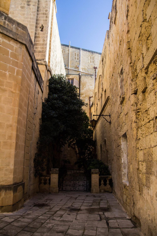 mdina-malta-travel-blog-71.jpg