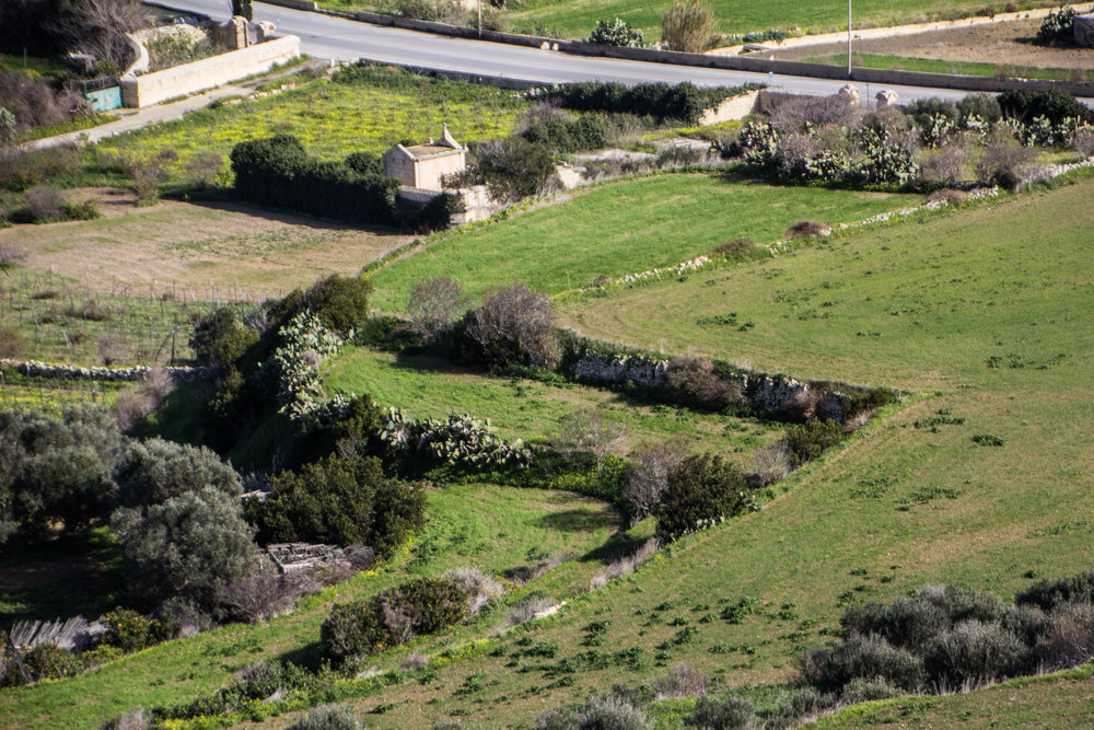 mdina-malta-travel-blog-53.jpg