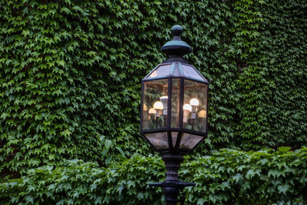 summer-north-end-boston-photography-22.jpg