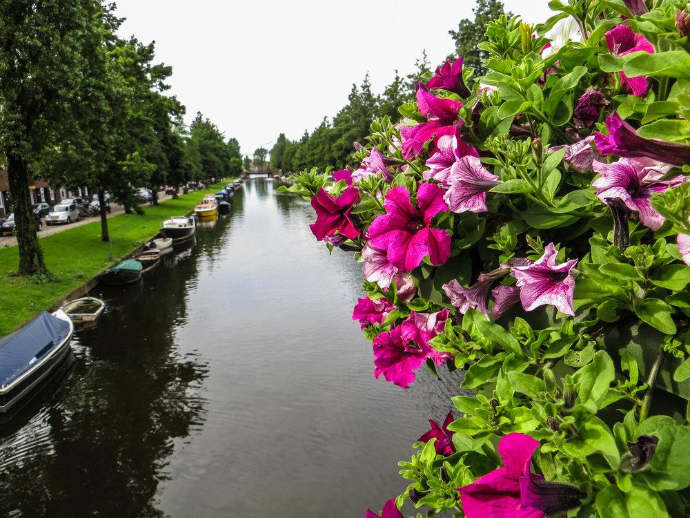 amsterdam-netherlands-street-photography-2-2.jpg