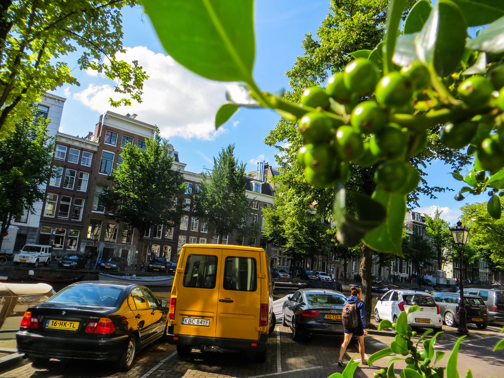 amsterdam-netherlands-street-photography-19.jpg