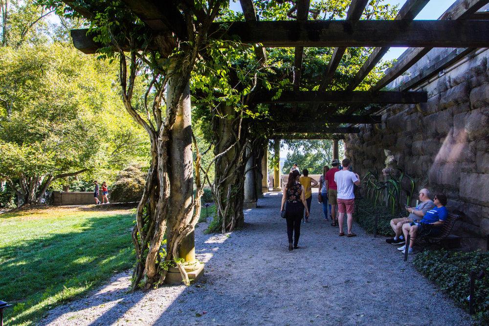 biltmore-mansion-grounds-asheville-73.jpg